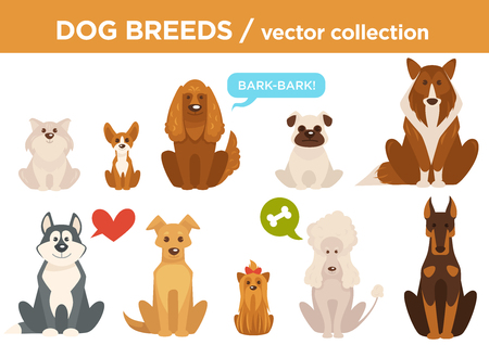 Dog breeds cartoon pet animals. Vector set of Chihuahua, husky or Shepherd dog and poodle with spaniel or terrier, akita and bulldog or Basenji hound with basset and beagle