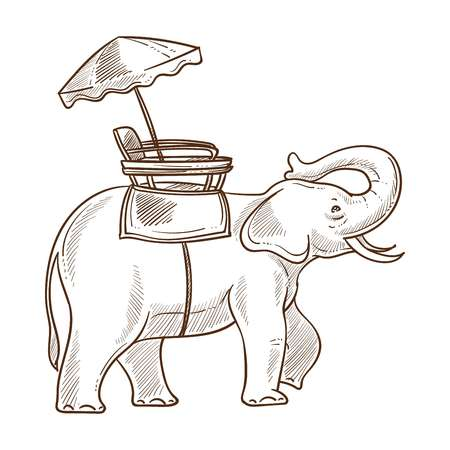 Elephant as mean of transportation sketch outline. Indian transport mammal with trunk with umbrella making shade on its back. Ride for tourists visiting country isolated on vector illustration