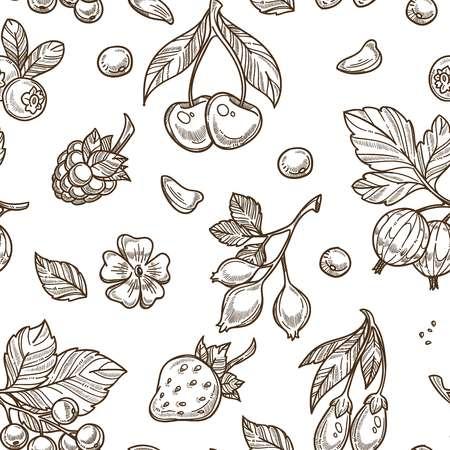 Berries sketch pattern vector seamless background Illusztráció