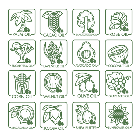 Cooking, cosmetic and essential oils vector icons Illustration