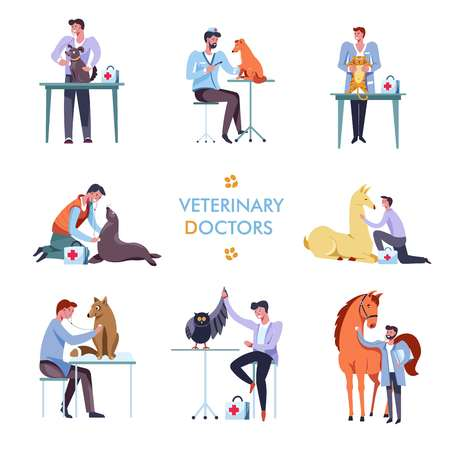 Veterinary doctors with animals. Veterinarian clinic doctor with stethoscope helping pets cat, dog or horse and bird for medical infographic design