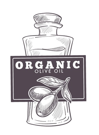 Olive oil extra virgin, monochrome sketch outline poster vector. Vegetable plant with leaves colorless greek organic food. Mediterranean ingredient to season salads and meals, nutritious product