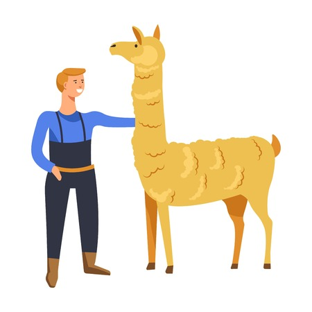Animals breeding o n farm, male with llama vector. Farmer tending mammal vicugna type of lama, camelid representative cared by man from farmhouse. Alpaca guanaco breed with wool and hairy skin