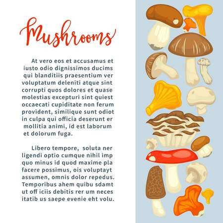 Ripe forest mushrooms of all edible species on promotional poster with sample text cartoon flat vector illustrations Natural harvest of organic food full of healthy proteins.