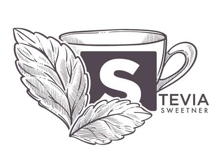 Stevia natural sweetener, leaf put in drink cup vector.