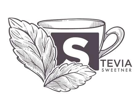 Stevia natural sweetener, leaf put in drink cup vector.