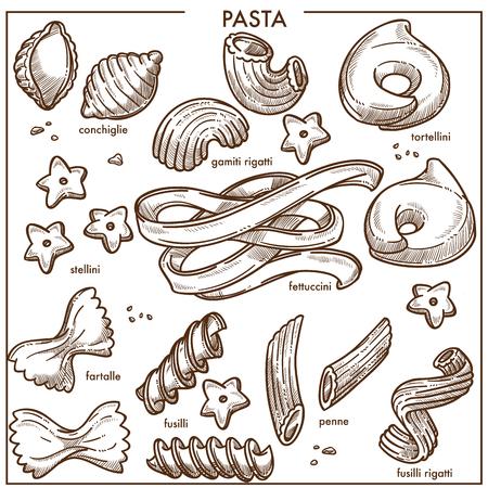 Conchiglie in form of seashell, tasty tortellini, gamiti rigatti, star-shaped stellini
