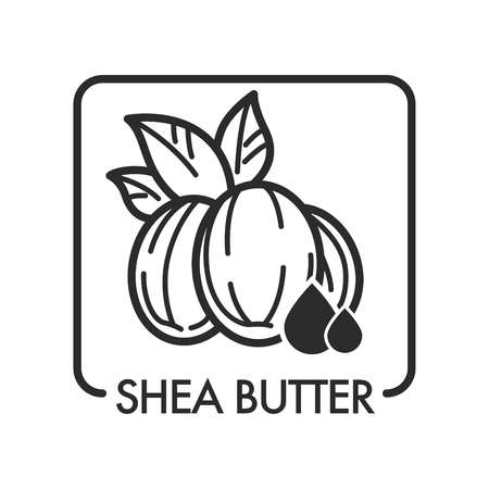 Shea butter organic product used in cosmetology for skin wellness and rejuvenation vector monochrome sketch outline ingredient for beautiful and healthy body treatment natural therapy framed icon 일러스트
