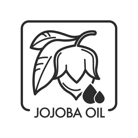 Jojoba oil healing organic natural product for face Archivio Fotografico - 112511333