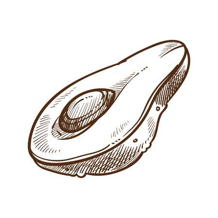Avocado ingredient used in cosmetics and food salads vector monochrome sketch outline of fruit rich in vitamins and nutrients half cut veggie with big seed oil from exotic vegetable for skin Иллюстрация