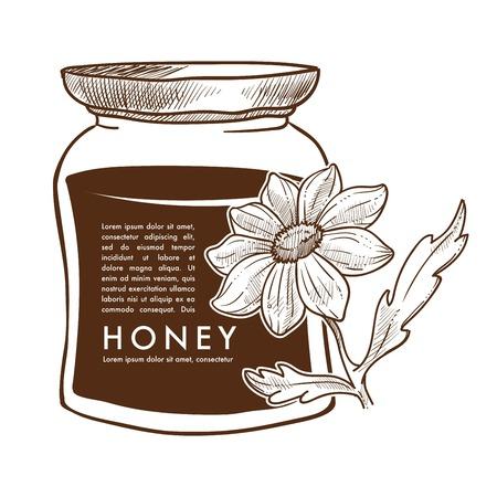 Pure honey poster monochrome sketch outline vector