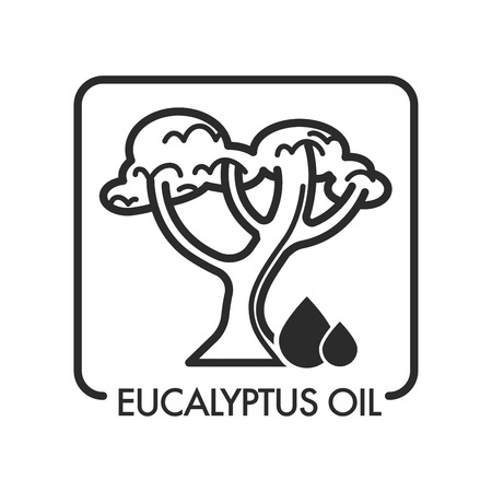Eucalyptus oil drops and tree with branches and foliage vector isolated icon of liquid used in beauty industry and aromatherapy massage treatment herbal component for skin and body beautification Vectores