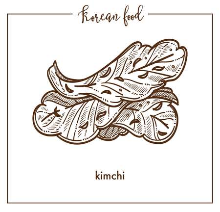 Delicious vegetarian kimchi leaves from traditional Korean food. Spicy seasoned sauerkraut Peking cabbage. Organic healthy dish of vegetable monochrome vector illustration on white background.