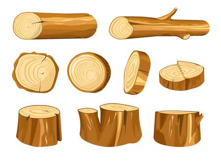 Forest stump and log wood and wooden natural materials vector building and heating oak or fir tree parts beam or timber baulk round section construction and furniture making isolated objects.