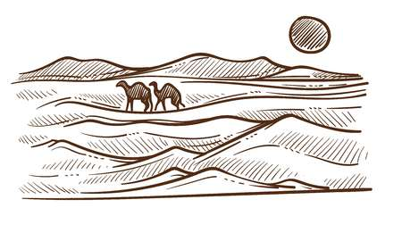 Desert with camels and barkhans or sand hills sketch vector African nature landscape sun and wild animals Sahara heat drawing travel to Egypt sand dunes and hot climate Saudi Arabia scenery or view. 일러스트