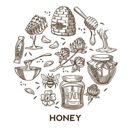Beekeeping and apiary honey products tools apiculture and farming vector sketch organic food beehive and honeycomb flower pollen bee and clover candy bar and preserved jars dipper treat or dessert. Illustration