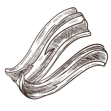 Bacon slices monochrome sketch outline isolated icon in flat style vector crispy food meat portion of pork from butcher fresh product closeup colorless traditional dish on breakfast in morning.