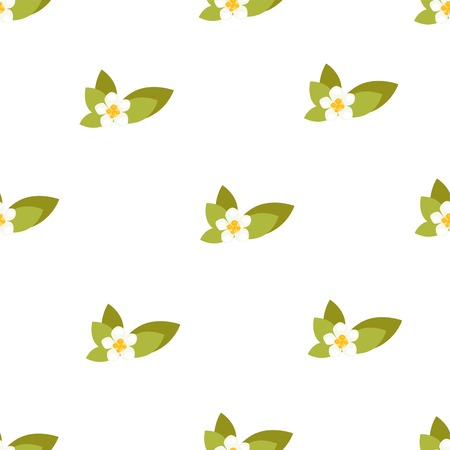 Seamless pattern with jasmine flowers. Vector background illustration