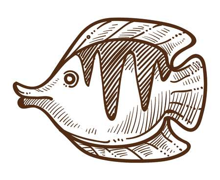 Flounder isolated sketch fish underwater animal with flippers or fins vector rounded body creature swimming sea or ocean species underwater fishing food delicatessen fishery marine and nautical. Illustration