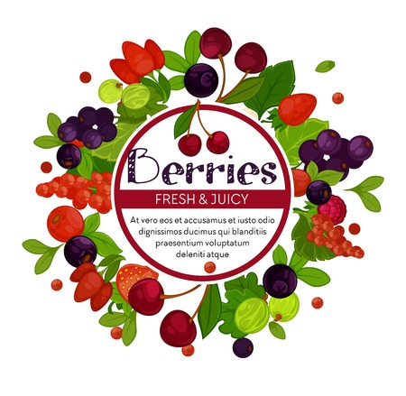 Berries isolated emblem cherry and currant strawberry and barbaris