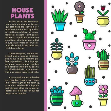 House plants indoor plants and flowers in pots poster