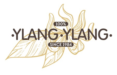 Ylang ylang spice and herb shop isolated icon with lettering