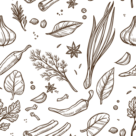 Seasoning herbs and spices sketch seamless pattern cooking vector dill and green onion anise and bay leaf chili pepper and garlic cinnamon and clove basil and nutmeg endless texture organic plants.