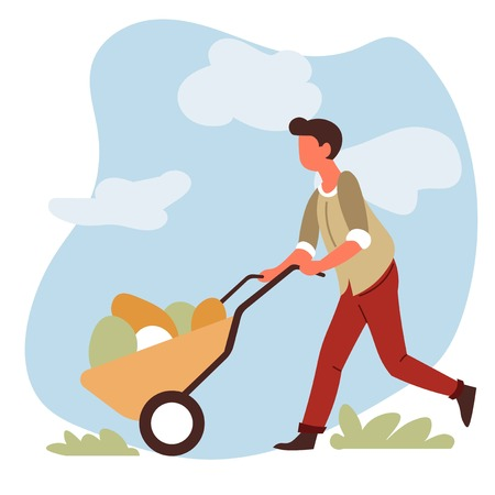 Farming and gardening man farmer with vegetable harvest in wheelbarrow vector male character garden equipment cart and organic farm food growing and cultivation countryside nature agriculture.