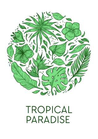 Exotic palm leaves and hibiscus flower tropical paradise poster template vector plants or greenery calla and plumeria buds foliage wild vegetation botany and rainforests or jungle flora blossom.