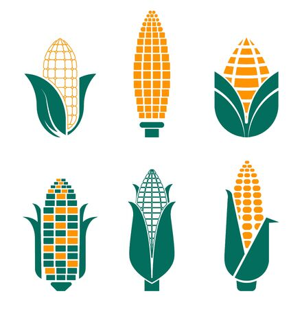 Corn vegetables isolated icons farm food and field plant