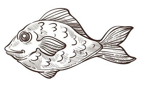 Poisson de croquis isolé de basse, animal sous-marin avec vecteur de palmes ou de nageoires. Créature au corps arrondi, nageant dans la mer ou l'océan. Espèces sauvages d'eau, nourriture de pêche et pêche, symbole marin ou nautique