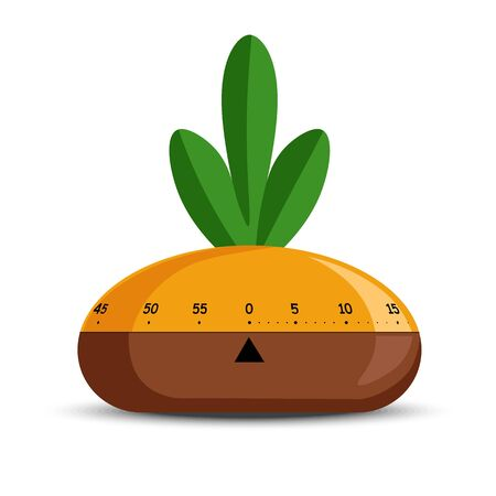 Timer or time measuring tool, turnip vegetable shape isolated object