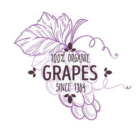 100 percent organic grapes label with flavourful purple fruit for all natural food packaging design