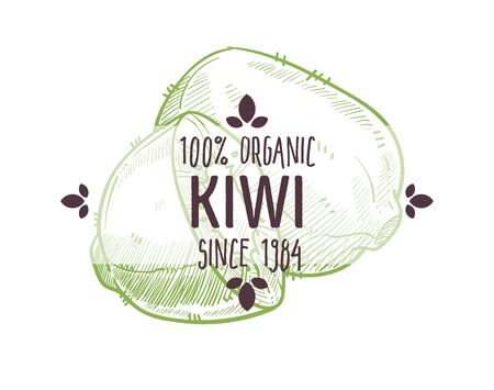 100 organic kiwi, kiwifruit, tropical citrus fruit, whole and freshly cut in half, label for all natural food packaging design, hand drawn detailed sketch, vector illustration on white background Ilustração