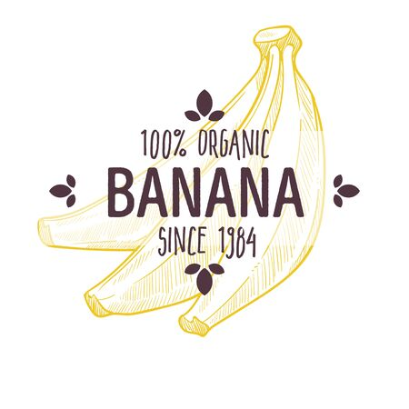 100 percent organic banana label with whole tropical fruit for all natural food packaging design