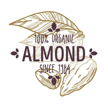 100 percent organic almond nut in shell and cracked open label for all natural food packaging design Ilustração