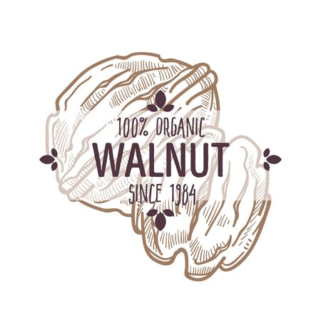 100 percent organic walnut in shell and edible part label for all natural food packaging design Ilustração