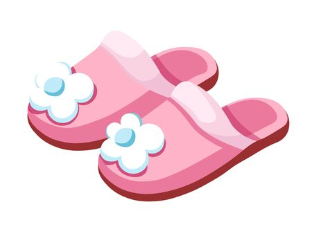 Female slippers, home footwear, isolated pair for women