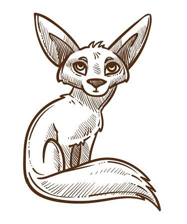 African wild animal, fennec fox isolated sketch Illusztráció