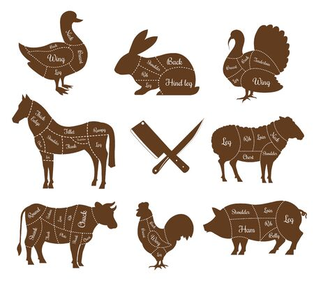 Livestock pets meat animal body parts isolated species vector dusk and rabbit turkey and horse sheep and cow rooster pig poultry pork and beef cutlery leg and wing ham and chuck fillet and rib