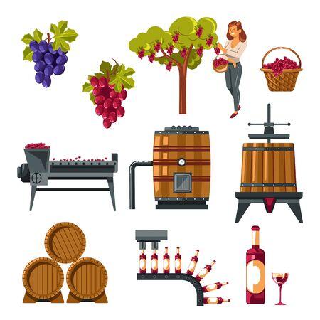 Proceso de vinificación ilustrado desde el cultivo de la uva hasta el embotellado del vino. Ilustración de vector