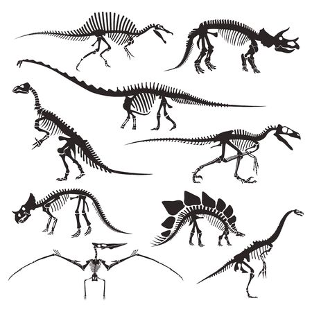 Prehistoric animals bones, dinosaur skeletons isolated icons