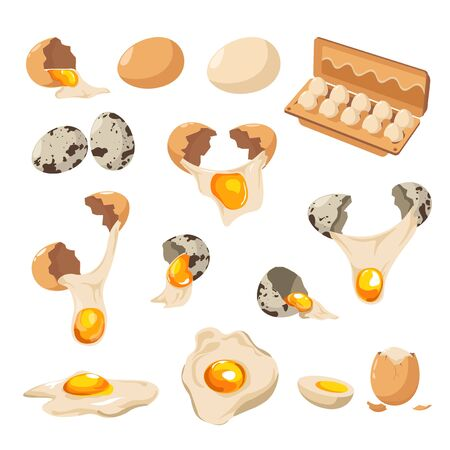 Eggs of chicken and quail, cracked shell and yolk isolated icons