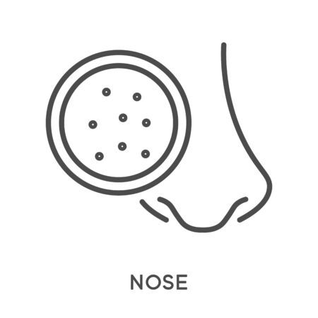 Nose cosmetical procedures, cleansing blackheads and dots in pores Vectores