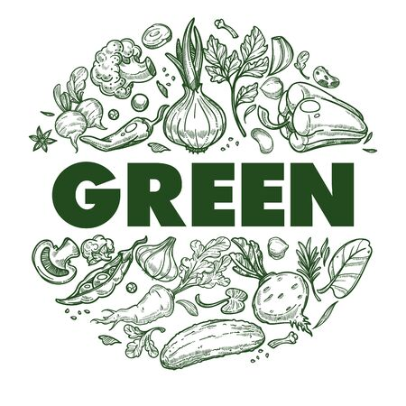 Green vegetables banner with hand drawn icons set in circle 向量圖像