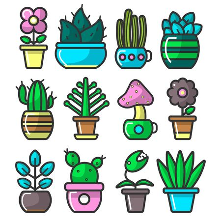 Houseplants in ceramic pots set. Potted cactus and succulent plants with green leaves or indoor flowers collection, bright colourful planters. Graphic vector illustration on white background.