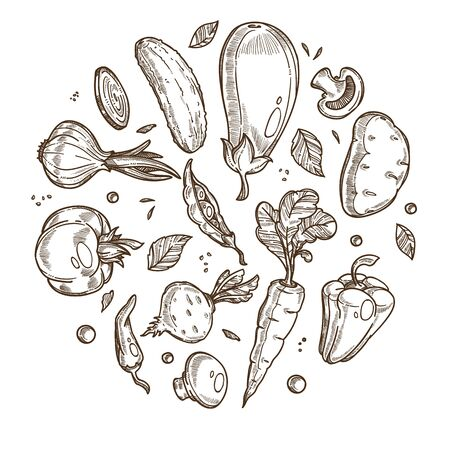 Organic products banner template, icons set in circle. Fresh vegetables, roots, legumes, culinary plants, herbs. Natural food and produce. Hand drawn sketch vector illustration on white background. Illusztráció