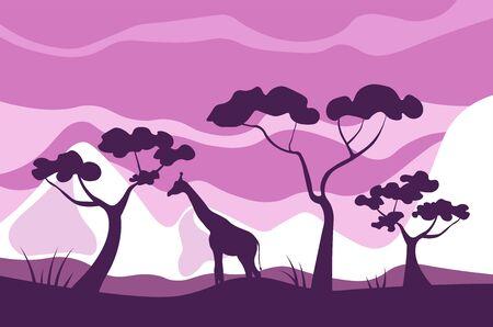 African savannah landscape, giraffe eats leaves of acacia trees