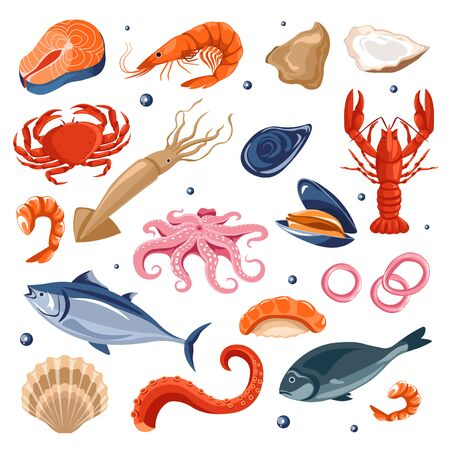 Seafood menu, fish and shrimp, lobster and squid or octopus Vettoriali