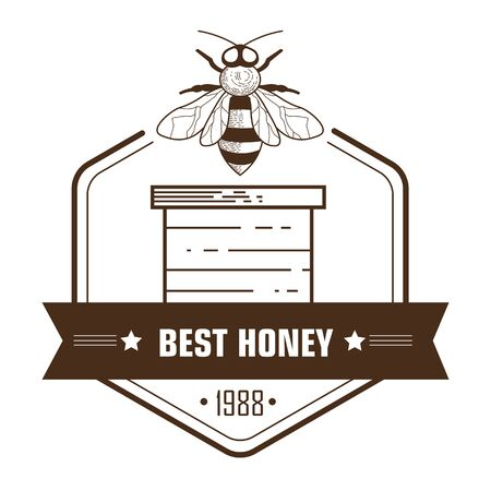 Apiary and beekeeping, honey natural product isolated icon